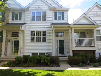 Pingree Grove Condo/Townhouse New: 893 Emerald Drive