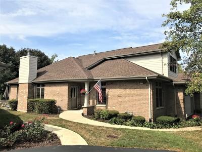 Palos Heights, Palos Hills Condo/Townhouse New: 6189 Princeton Lane