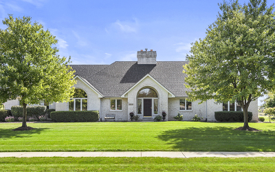 Naperville Single Family Home For Sale: 24323 Turnberry Court