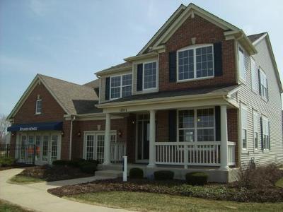 Huntley Single Family Home Contingent: 11911 Davis Lane