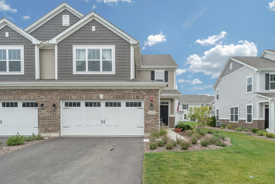 Lockport Condo/Townhouse New: 16131 West Coneflower Drive