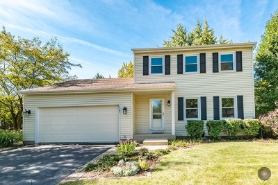 Naperville Single Family Home For Sale: 1787 Villanova Drive