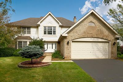Schaumburg Single Family Home New: 9 Nicolette Avenue