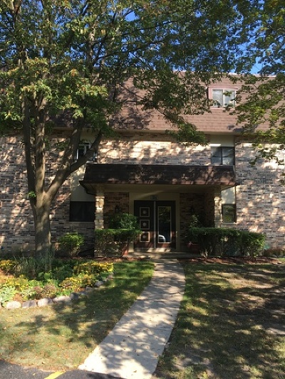 Palos Heights, Palos Hills Condo/Townhouse New: 9178 South Road #E