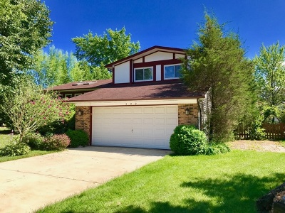 Bolingbrook Single Family Home New: 309 Trafalgar Court