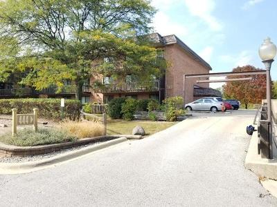 Downers Grove Condo/Townhouse New: 444 Redondo Drive #204