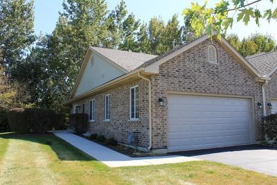 McHenry Condo/Townhouse New: 5701 Fieldstone Trail #5701