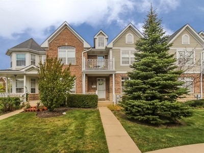 Schaumburg Condo/Townhouse New: 1413 Brownstone Place