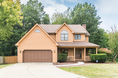 Montgomery Single Family Home New: 79 Red Fox Run