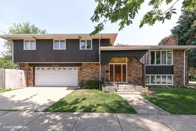La Grange Single Family Home For Sale: 1046 South Madison Avenue