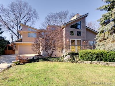 Hinsdale Single Family Home New: 34 South Stough Street