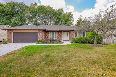 Naperville Single Family Home Contingent: 205 Olesen Drive
