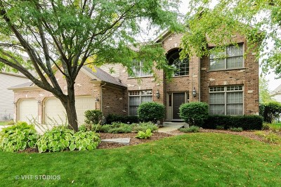 Naperville Single Family Home New: 2807 Champion Road