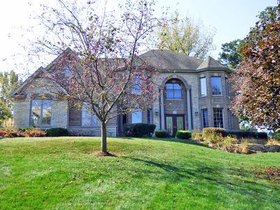 St. Charles Single Family Home New: 5n175 Oak Hill Drive
