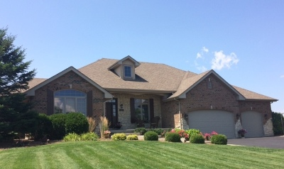 Frankfort Single Family Home New: 9489 West Golfview Drive