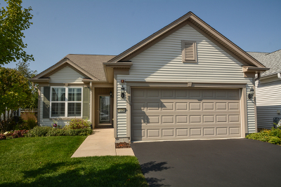 Huntley Single Family Home Contingent: 12759 Holbrook Drive