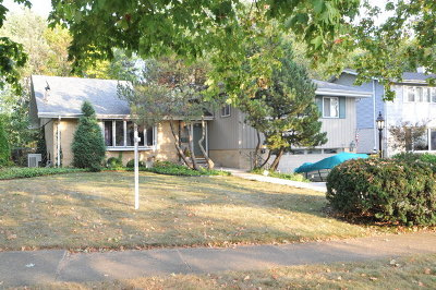 Villa Park Single Family Home New: 1011 South Rand Road