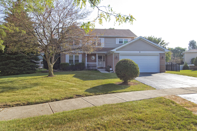 Bolingbrook Single Family Home New: 2 Hidden Valley Court