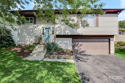 Bolingbrook Single Family Home New: 146 Ridgewood Court