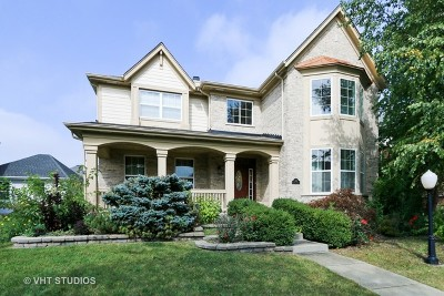 Vernon Hills Single Family Home New: 406 North White Deer Trail