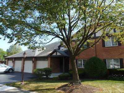 Willowbrook Condo/Townhouse New: 137 Stanhope Drive #D