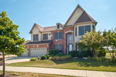 Elgin Single Family Home For Sale: 167 Winding Hill Drive