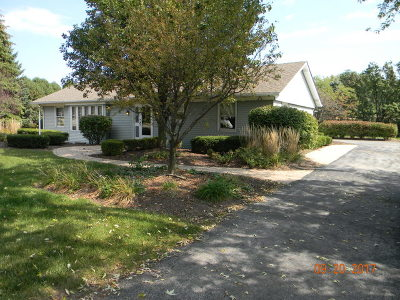 Mokena Single Family Home New: 18721 South Townline Road