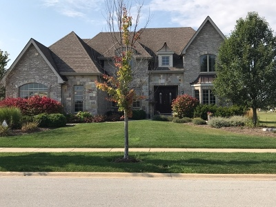 Frankfort Single Family Home Contingent: 22769 Stanford Drive