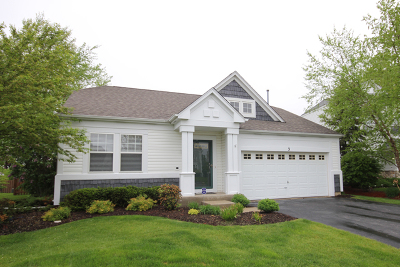 Lake In The Hills Single Family Home New: 3 Raxburg Court