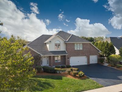 Orland Park Single Family Home For Sale: 15632 Glenlake Drive