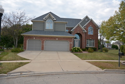 South Elgin Single Family Home New: 828 Chasewood Drive