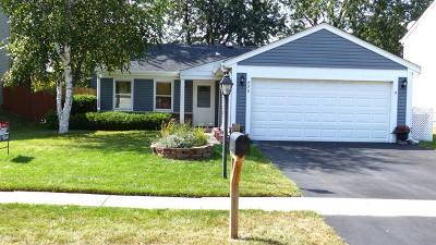 Roselle Single Family Home New: 770 Meade Lane