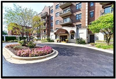 La Grange Condo/Townhouse Contingent: 420 West Burlington Avenue #302