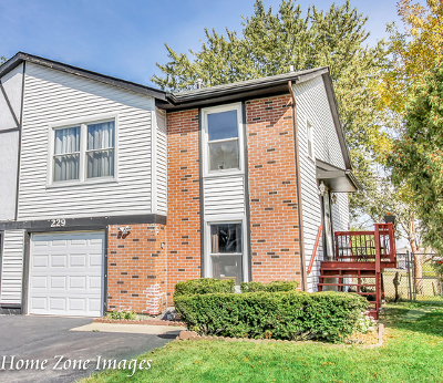 Bolingbrook Condo/Townhouse New: 229 Hywood Lane