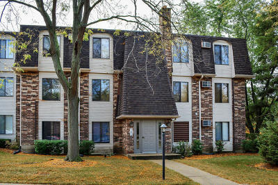 Vernon Hills Condo/Townhouse New: 995 South Court Of Shorewood #2B