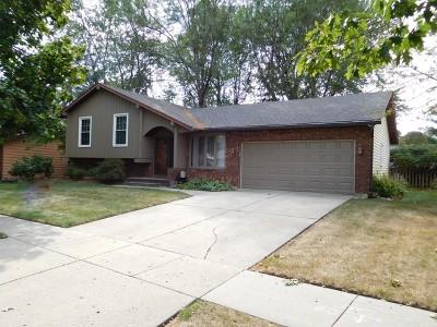 Elgin Single Family Home New: 1304 North Lyle Avenue