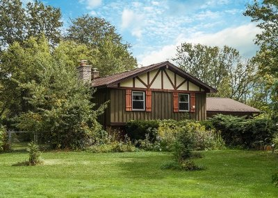 Lake Zurich Single Family Home New: 202 Linden Road