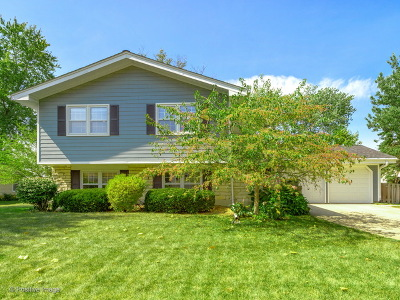 Glen Ellyn Single Family Home Contingent: 2s504 Ashley Drive