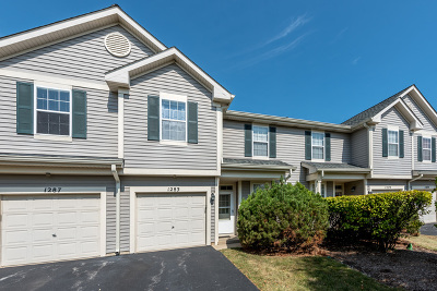 Naperville Condo/Townhouse New: 1283 Whispering Hills Drive
