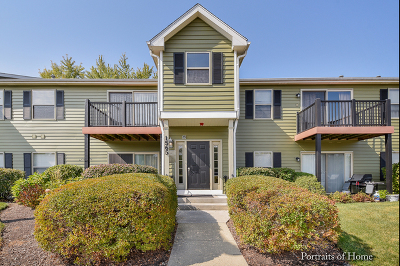 Naperville Condo/Townhouse For Sale: 1565 Raymond Drive #201