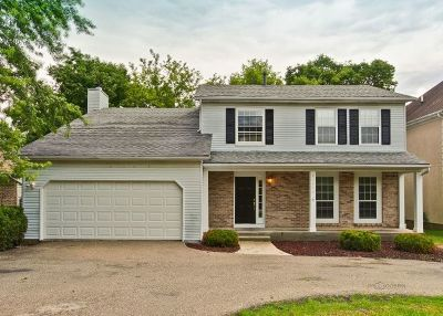 Lake Zurich Single Family Home New: 23453 North Valley Road