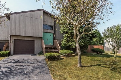 Roselle Condo/Townhouse New: 56 Salt Creek Road #A