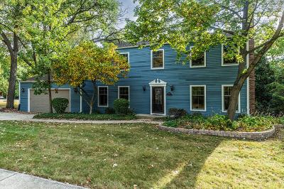 Lisle Single Family Home For Sale: 5399 Driftwood Court