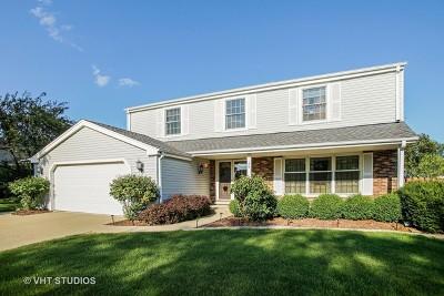 Schaumburg Single Family Home New: 1139 Jamestown Court