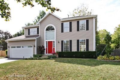 Cary Single Family Home New: 28 Hampton Street