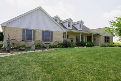Monee Single Family Home For Sale: 11141 West Saddle Drive