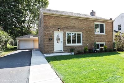 Elmhurst Single Family Home New: 181 South West Avenue
