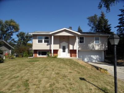 Carol Stream Single Family Home New: 207 Arapahoe Trail