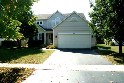 Romeoville Single Family Home For Sale: 270 Columbine Lane