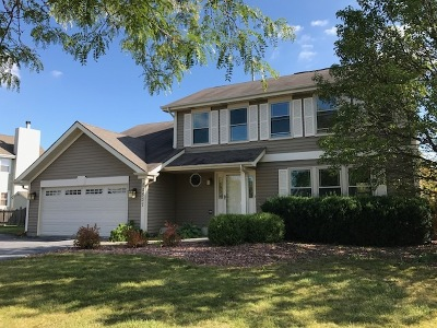 Frankfort Single Family Home New: 20537 Timber Mill Drive